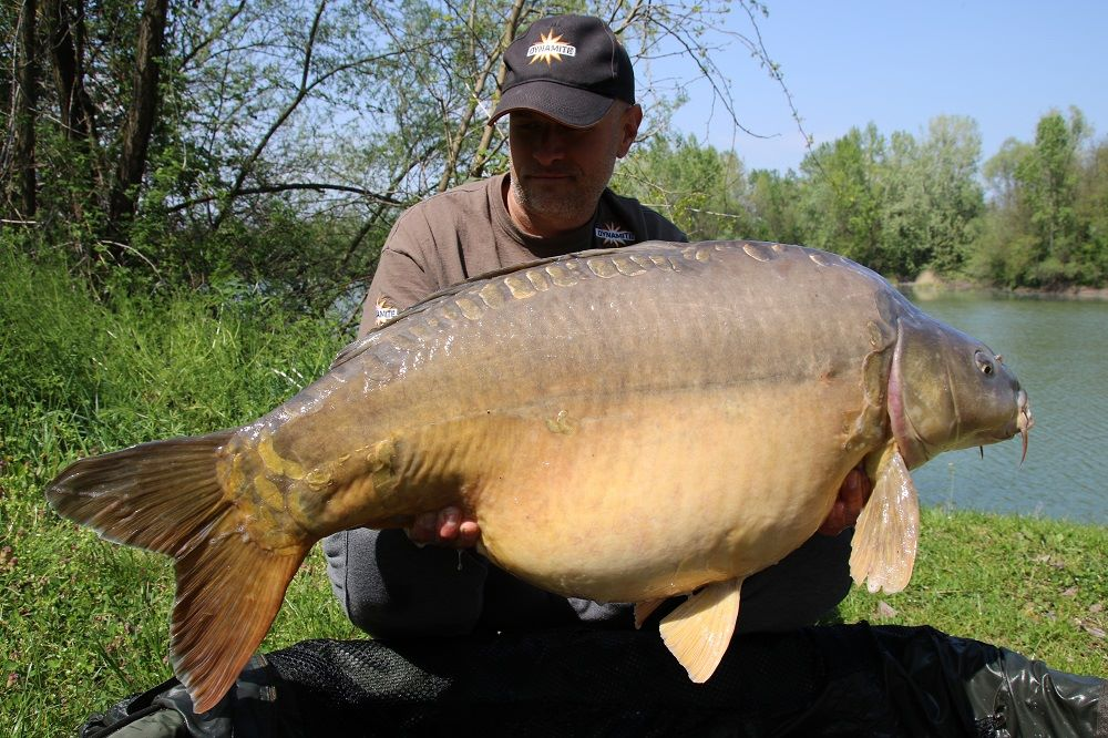 srecko karadzic 22kg bosnia mirror on complex-t and source