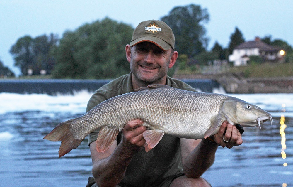 10-4 Barbel - Collingham Weir - Shrimp & Krill river buster - 17th July