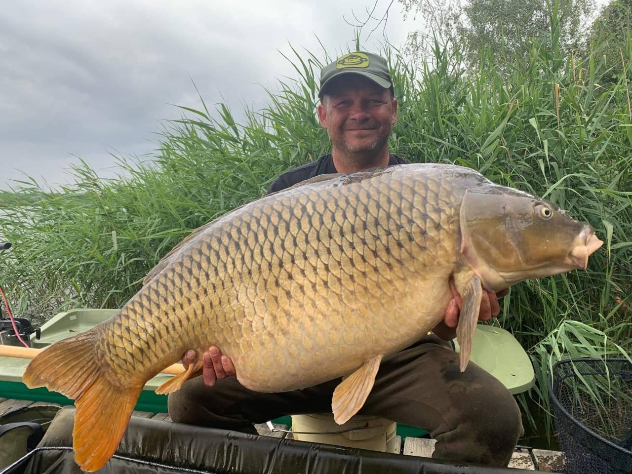 27kg poland carp