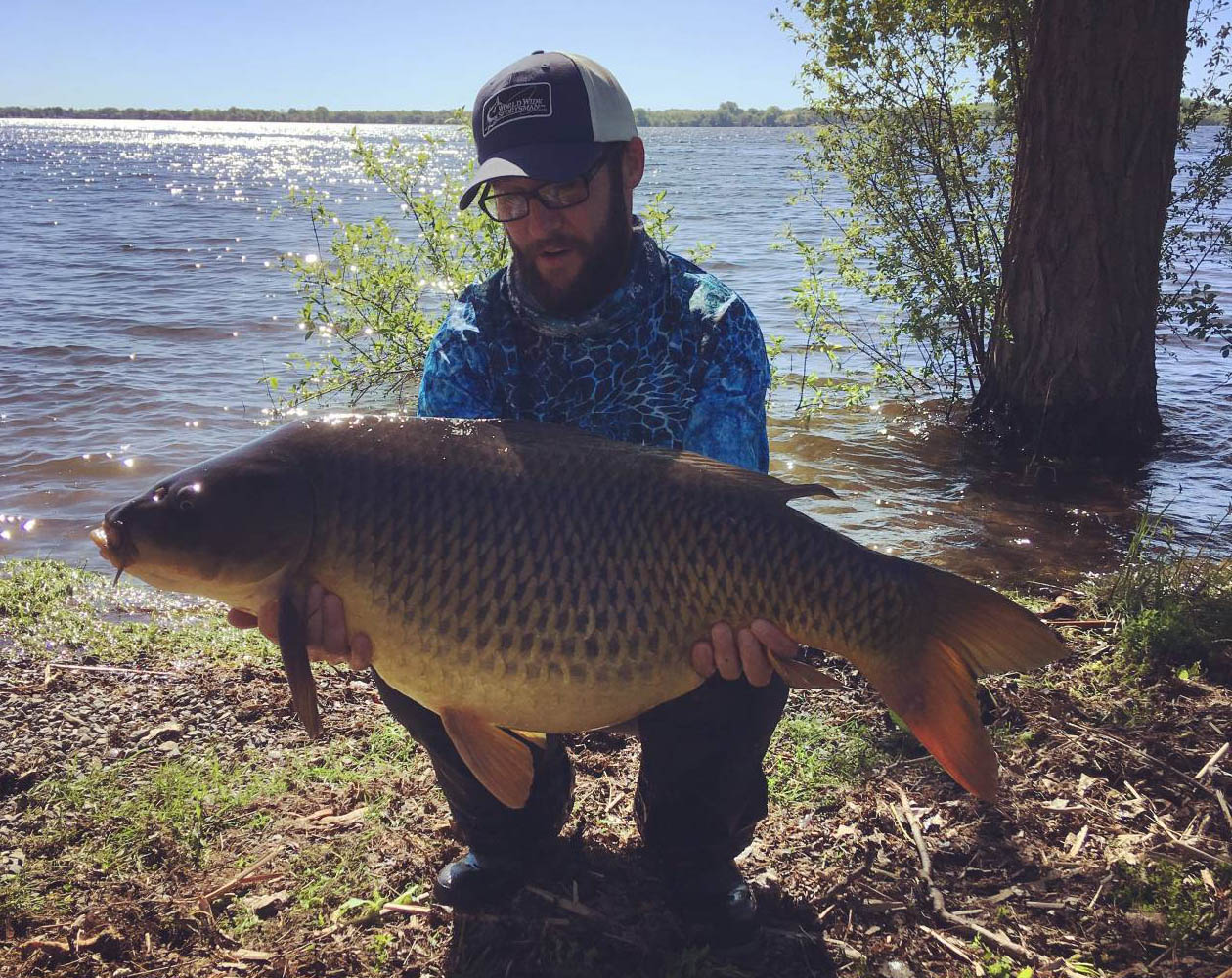 canada carp fishing robin red pop-up