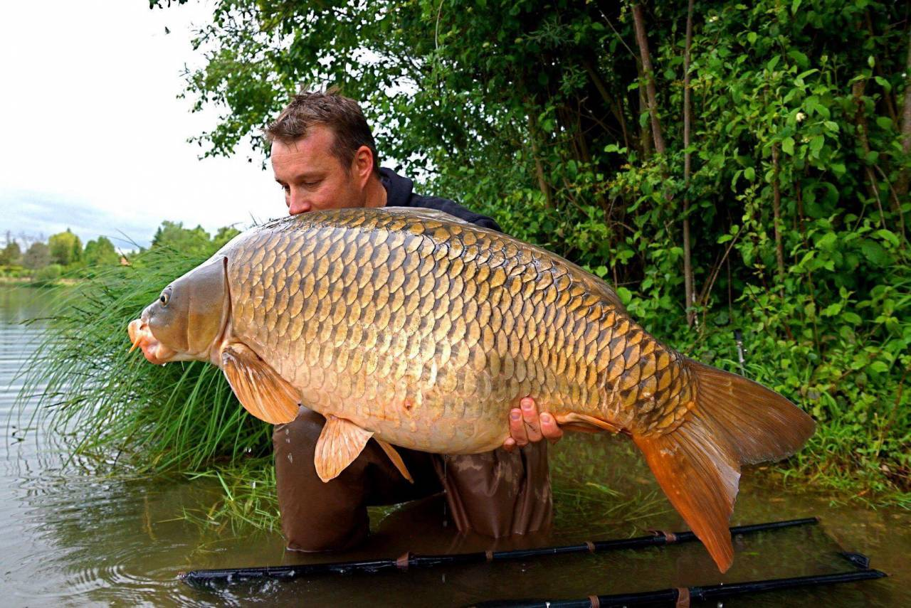 24,5 commune I take it with the tiger nut red amo boilies 15mm pop-up on a spot if tiger nut red amo boilies Thé spot Was a litle piece of sand next to grass