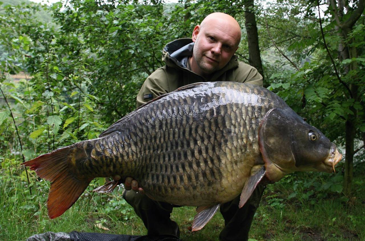 radek bis river carp czech republic the crave