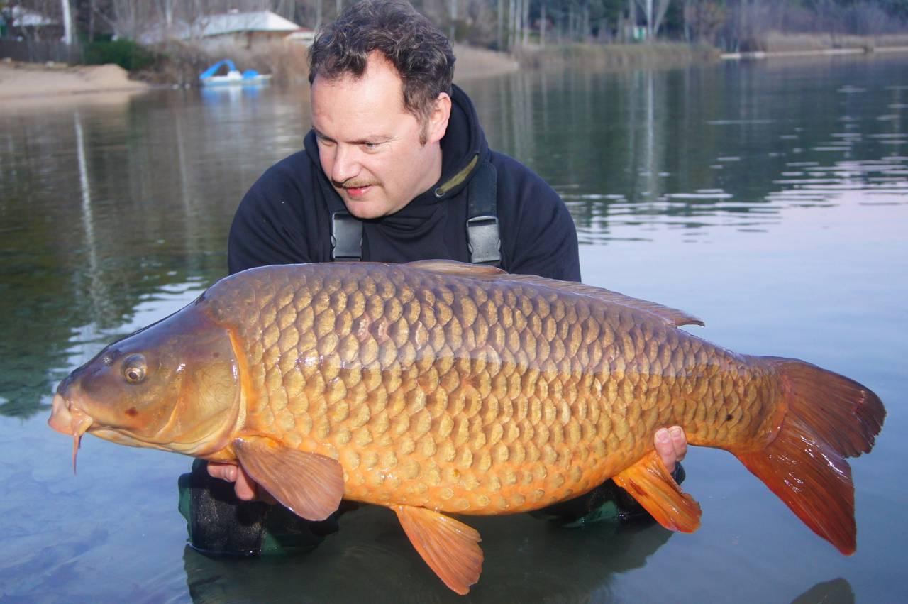 ruidera lakes common carp on The Crave