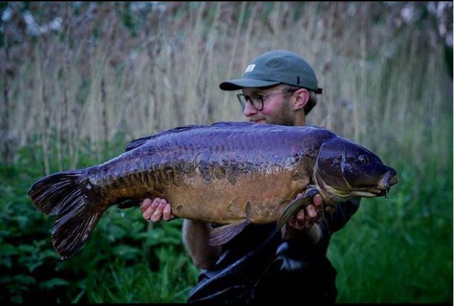 ben wood carp