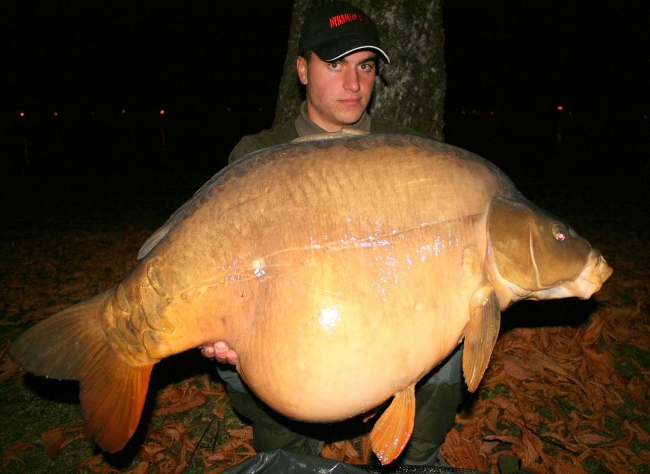 2009 carp