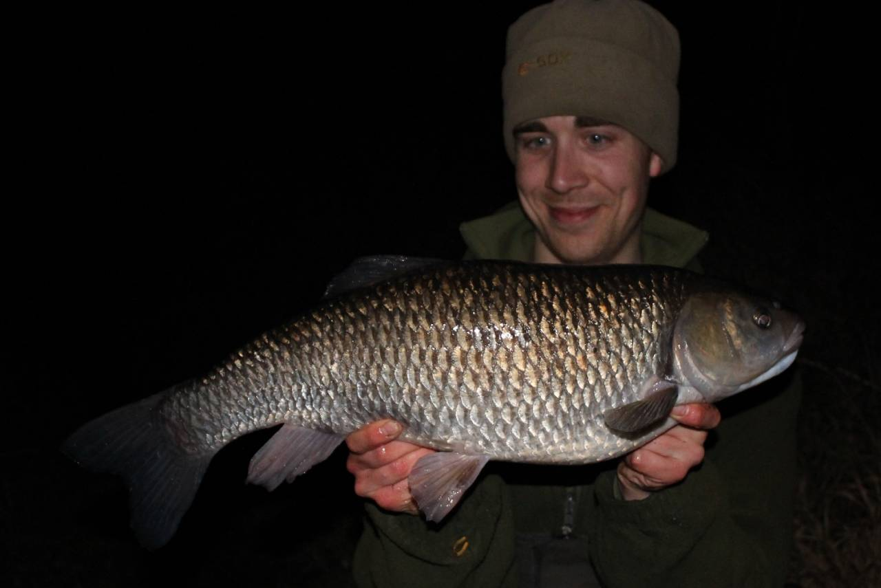 Chub have to be the most reliable of winter species and there's a whole host of methods you can try to catch them.