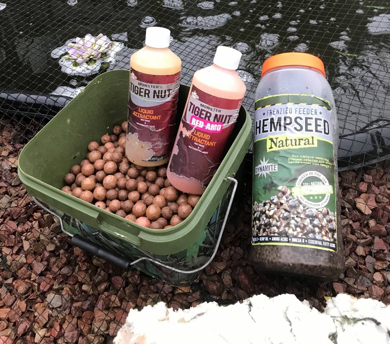 my bait selection for the avenue carp