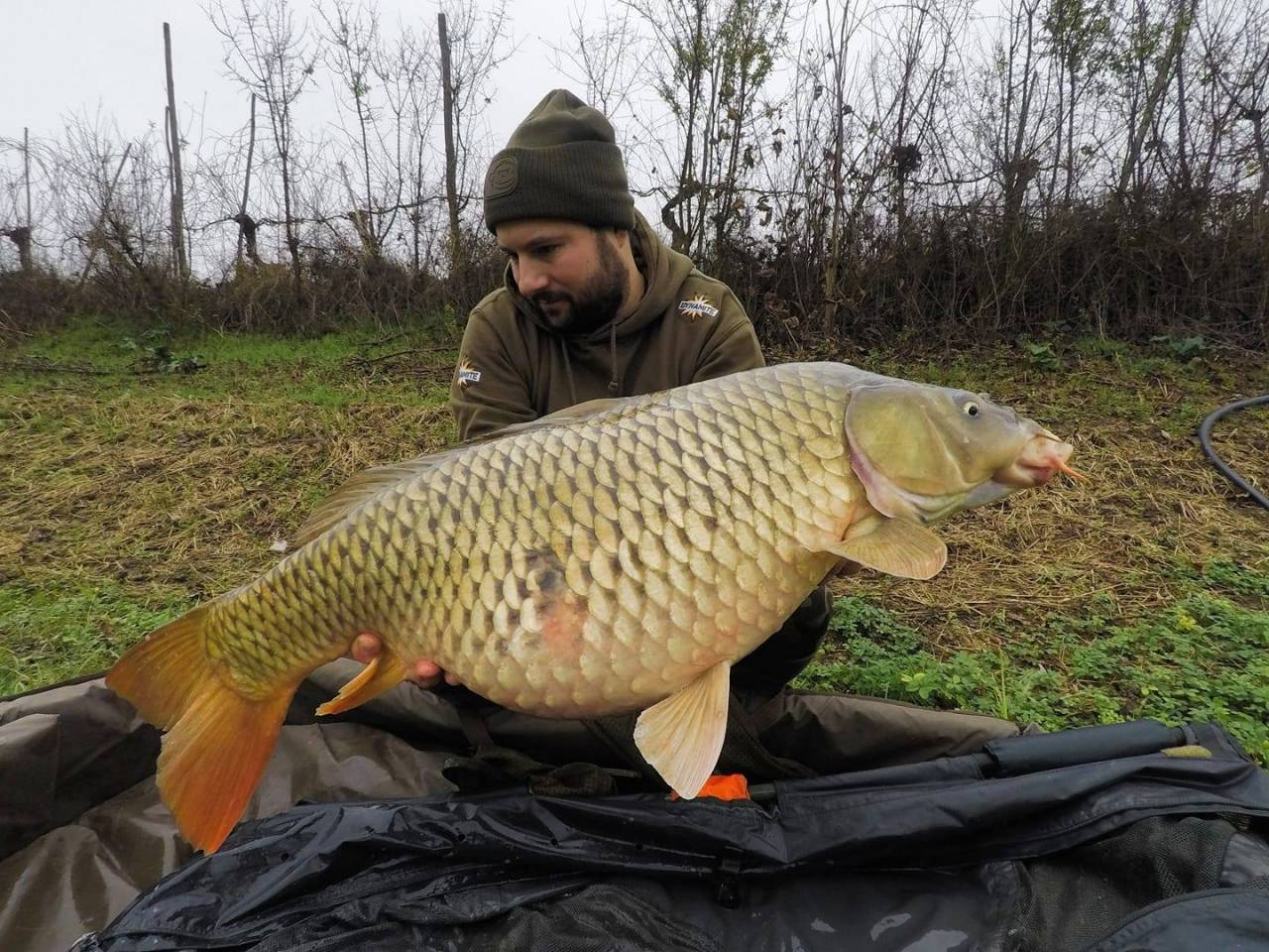 thomas santandrea italian carp the source 2020