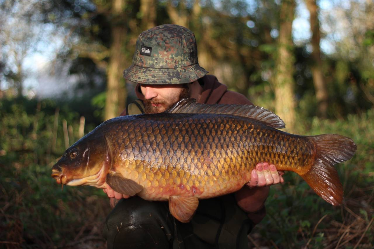 yateley carp dave williams 1