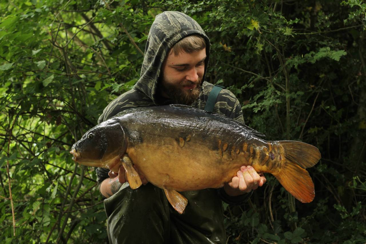 yateley carp dave williams 12