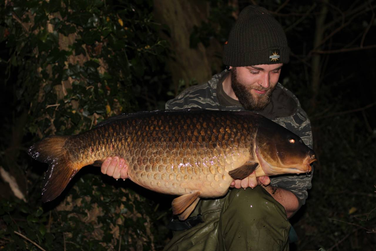 yateley carp dave williams 13