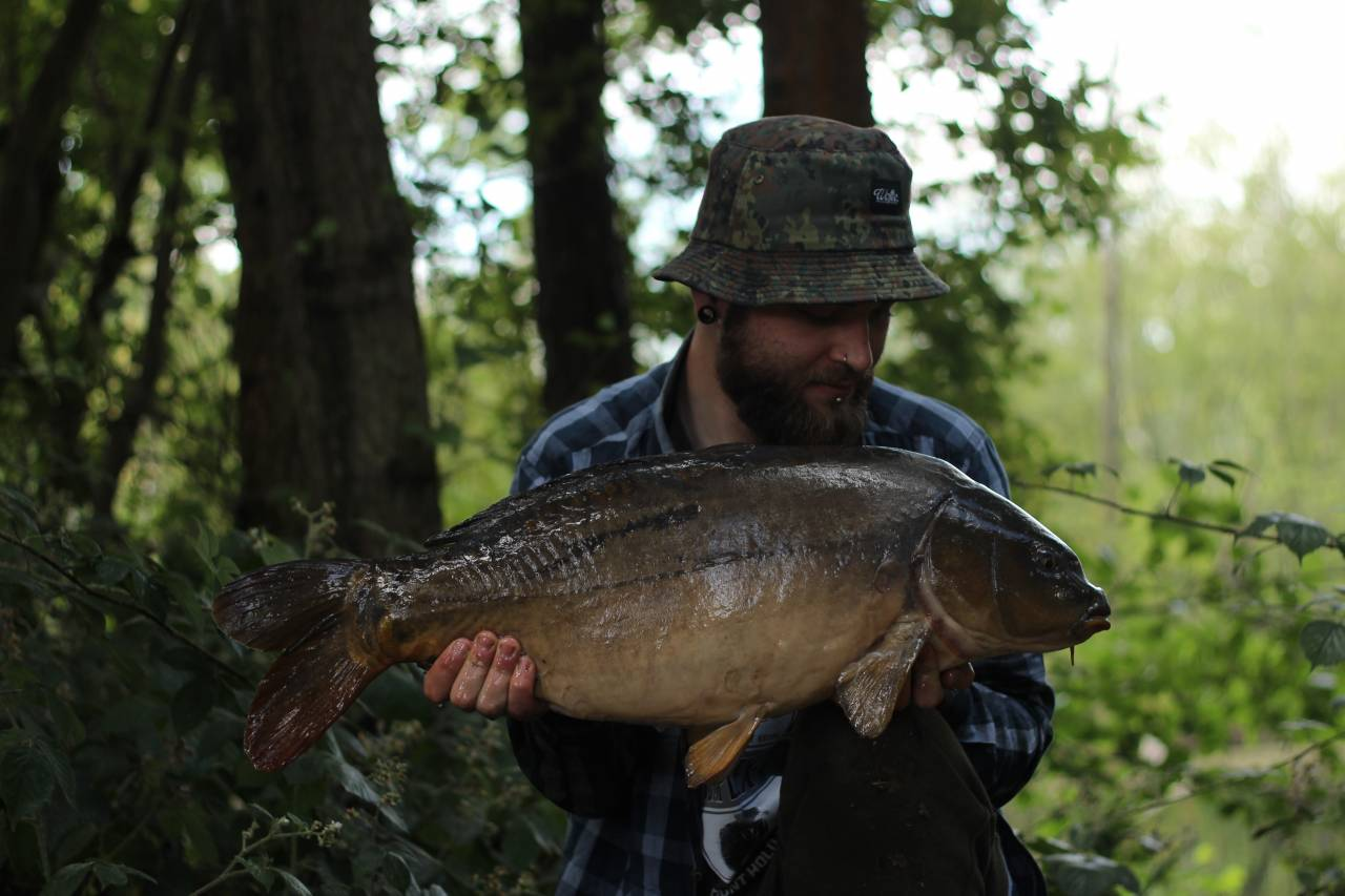 yateley carp dave williams 16