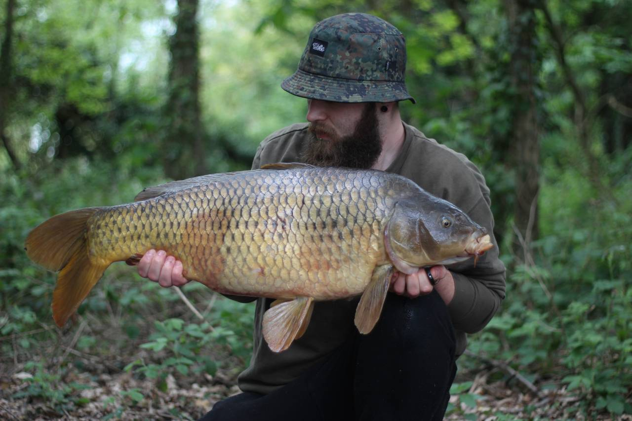 yateley carp dave williams 2