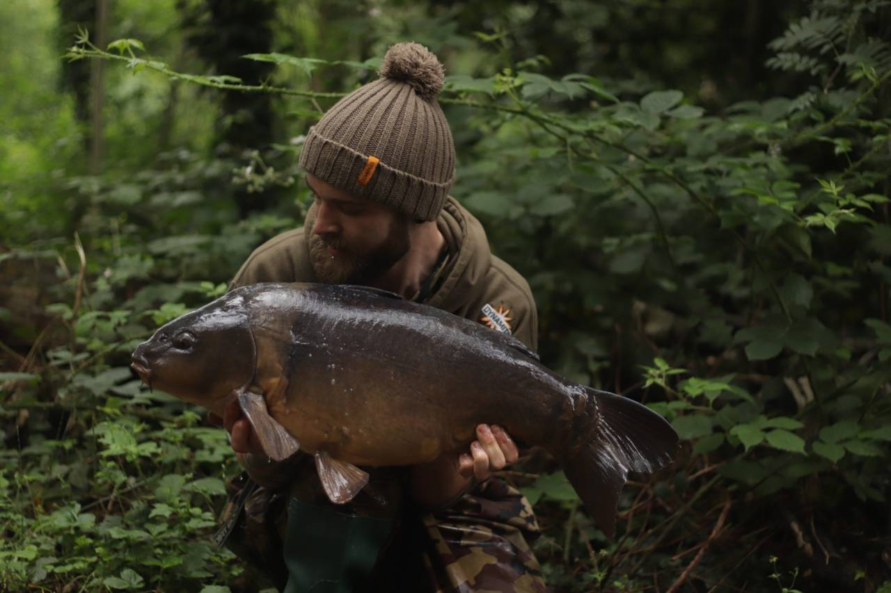 yateley carp dave williams 20