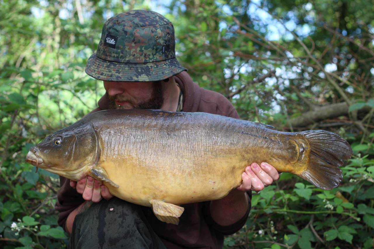 yateley carp dave williams 4