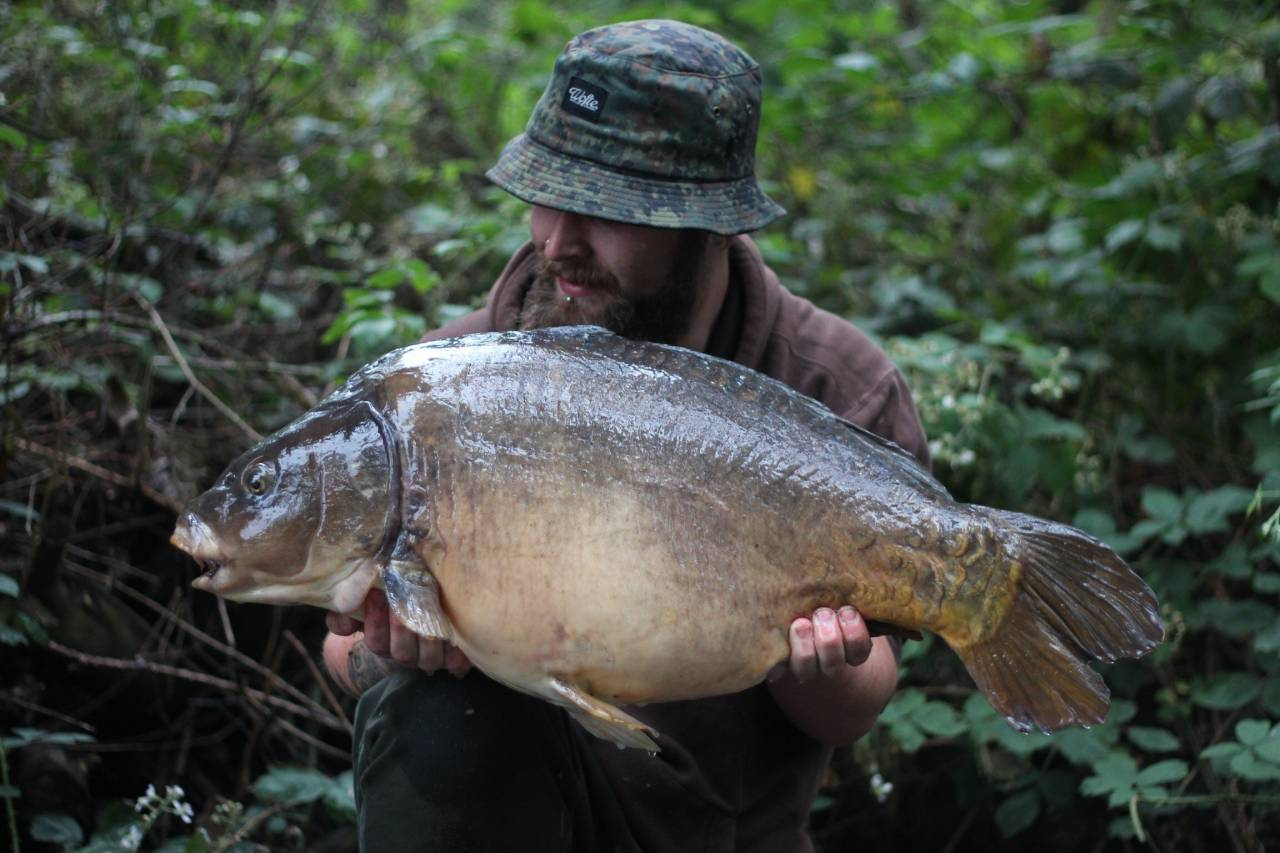 yateley carp dave williams 5
