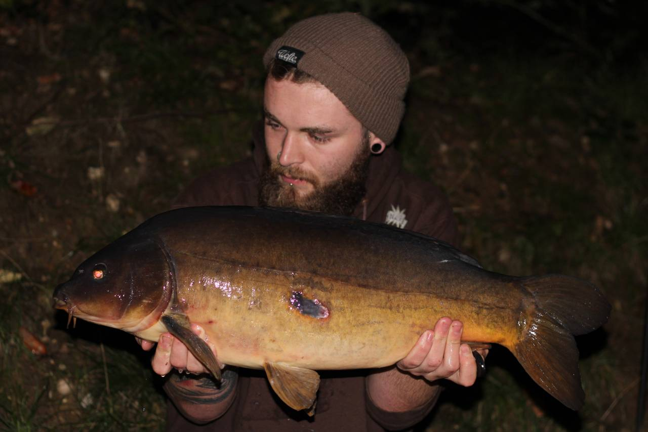 yateley carp dave williams 6