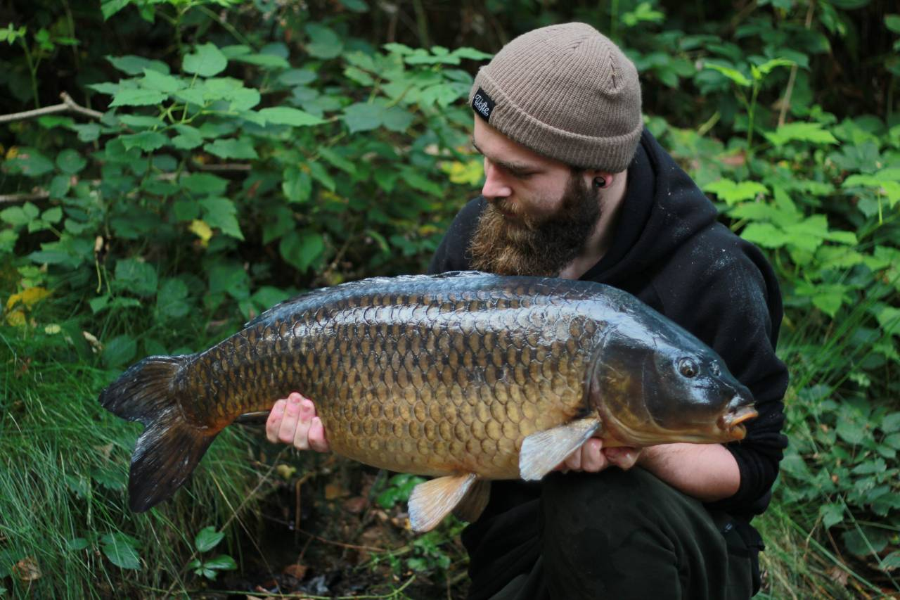 yateley carp dave williams 8