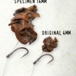 Hemp & Snails
