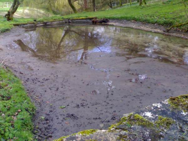 a silty or muddy bottom can be just as good as a gravel area for targeting feeding carp