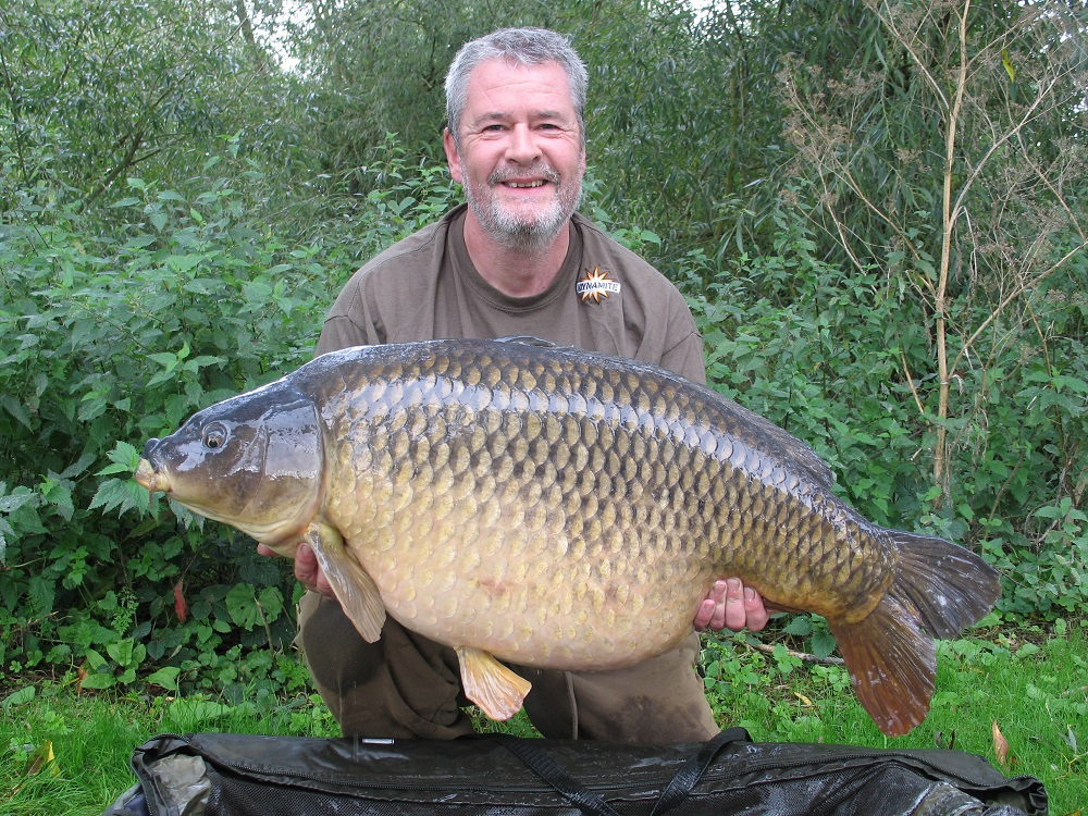 box common tony gibson